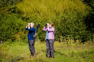 Bird watching at Hauxley - Simon Greener