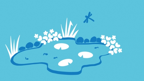 Simple actions wildlife pond illustration