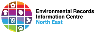 ERIC north east logo web small
