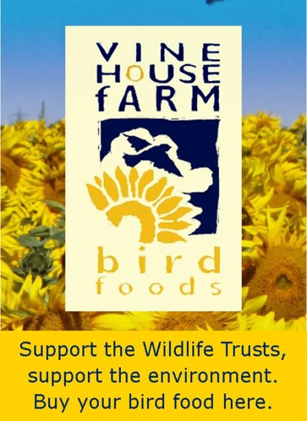 Vine House Farm Wildlife Trust web insert