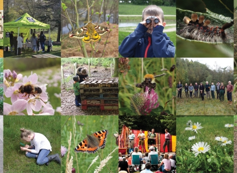 30DaysWild collage